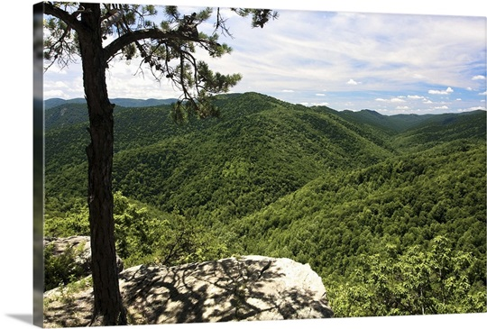 blue ridge lesbian singles Check out these packages, discounts, special offers and travel deals for your vacation getaway to asheville, biltmore house and the surrounding blue ridge and smoky.