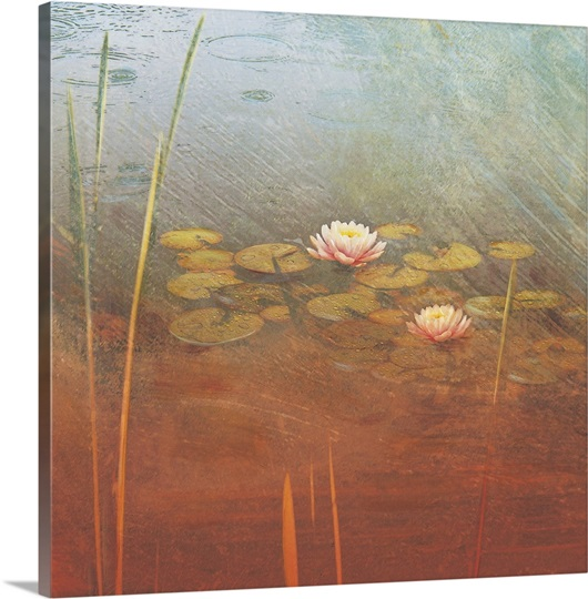 Pond Lilies II