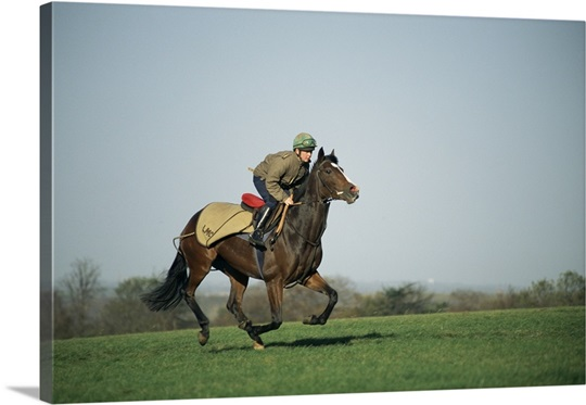 A jockey and thoroughbred race horse galloping fast on an open field in England.
