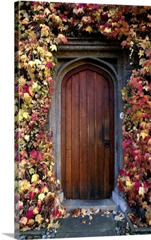 Autumnal leaf covered wall surrounding an old wooden arch framed door, Cambridge