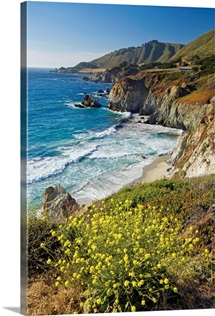 Beach view, Big Sur, California,