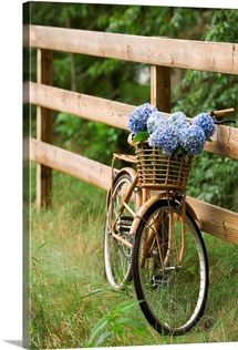 Bike with basket of flowers