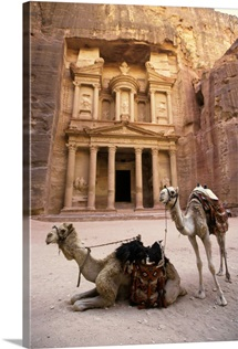 Camels in front of Al-Khazneh treasury ruins, Petra, Jordan