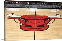 Chicago Bulls logo on the court