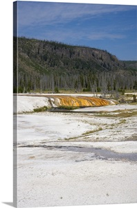 yellowstone national park black single women We offer free or low-cost single supplements—the best our free 101 tips for women travelers booklet national park on an excursion to yellowstone.