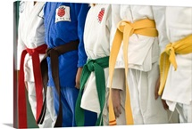 Colorful belts on martial arts students