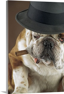 Dog with cigar and hat