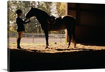 Equestrian feeding horse in stable