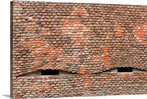 Eyelike dormer windows in a tiled roof