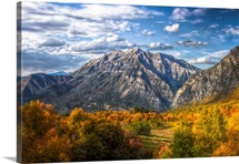 Fall colors and Mount Timpanogos.