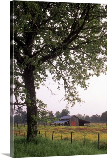 karnack chat Karnack is a rural unincorporated community in northeastern harrison county near caddo lake in the eastern region of the us state of texas the town is named after karnak, egypt (near modern-day luxor.