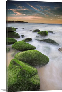Green mossy rocks at Curl Curl Beach Northern Beaches, Sydney NSW Australia.