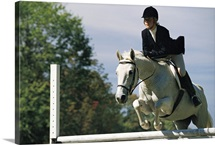 Horse jumping in equestrian event