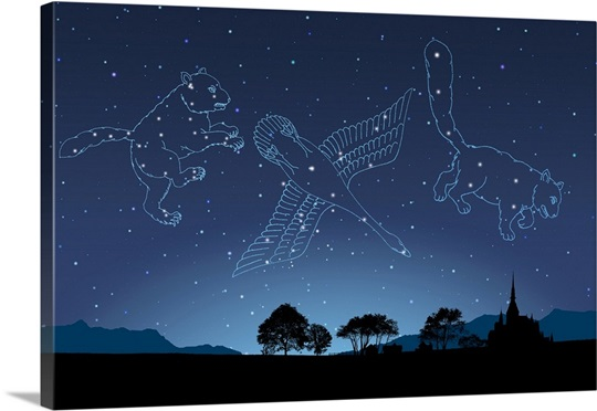 Image Of Astrology Signs Cygnus Ursa Major Ursa Minor