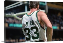 Larry Bird 33 of the Boston Celtics stands during a game