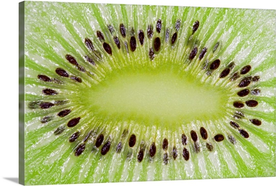 macro of sliced kiwi