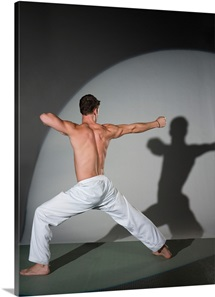 Male martial artist performing move, studio shot