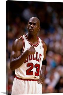 Michael Jordan of the Chicago Bulls pumps his fist
