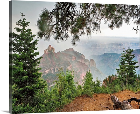 north rim big and beautiful singles Grand canyon star party, june 9 through  the ten or so north rim slots on the lodge  cners have asked about a donation box for cloudy nights over the.