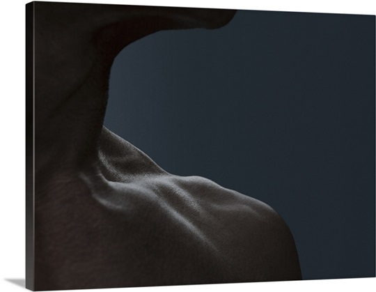 portraits of real, natural aging male bodies