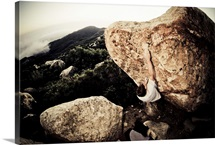 Rock climber, Santa Barbara, California.