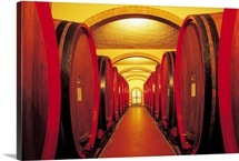 Rows of wine casks in cellar