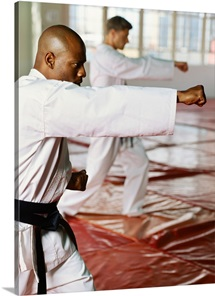 Side profile of two mid adult men performing karate