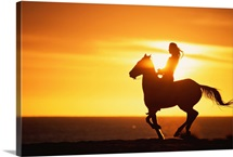 Silhouette of woman riding horse at sunset