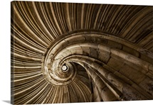 Snail Spiral Staircase