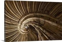 Snail Spiral Staircase