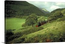 Steam railway, Talyllyn, Gwynedd, Wales.