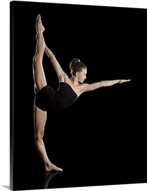The standing bow pose, Dandayamana Dhanurasana