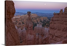 Thor's Hammer in full moonlight, Sunset Point Bryce Canyon National Park, Utah