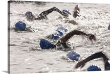 Triathletes competing in swim leg of triathlon