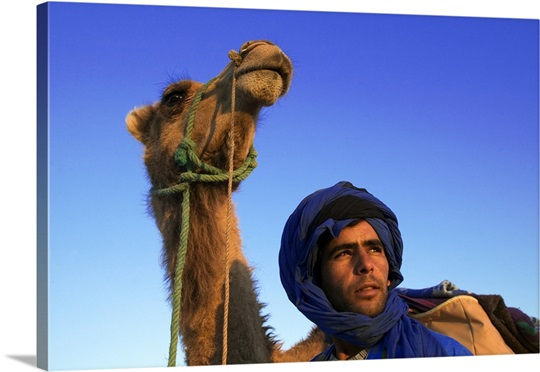 Tuareg man dressed in blue robe with camel in the Erg Chebbi area. Morocco