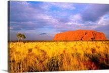 Uluru-Kata Tjuta National Park, Northern Territory, Australia