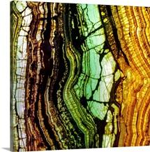 Sliced Agave Geode
