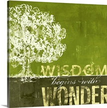 Wisdom Begins with Wonder