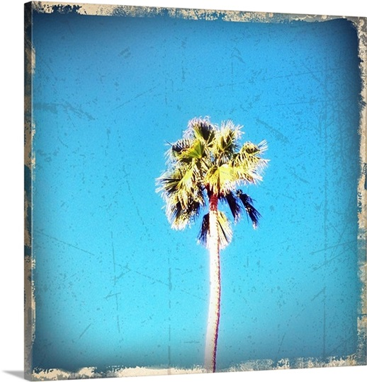 Retro Palm Photo 1