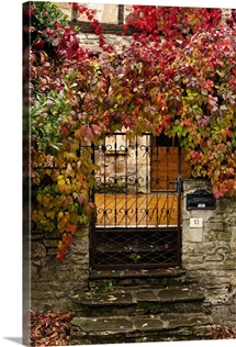 France, Midi-Pyrenees Region, Tarn Department, gate with autumn foliage