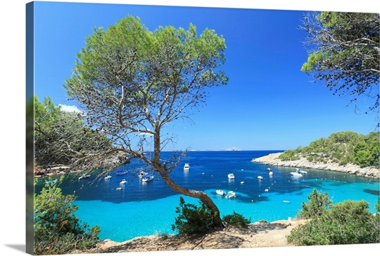 spain balearic islands ibiza cala salada beach photo canvas print great big canvas. Black Bedroom Furniture Sets. Home Design Ideas