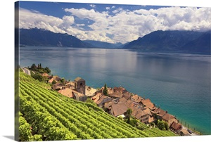 lake geneva big and beautiful singles Location 10-minute walk to beautiful geneva lake and downtown  we offer  the best rates on single, adjoining and full size cabins  bigger really is better.