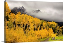Fall Colors Peak In Colorado's Rocky Mountains Telluride