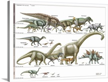Timeline of Dinosaurs