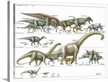 Timeline of Dinosaurs