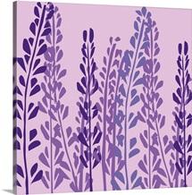 Lavender On Pink