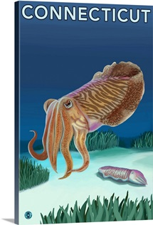 Connecticut - Cuttlefish Scene: Retro Travel Poster