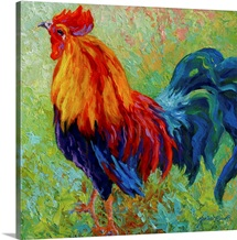 Band of Gold Rooster