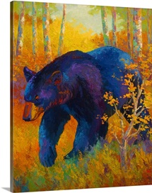 Into Spring Black Bear
