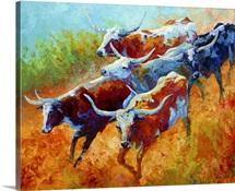 Longhorns II